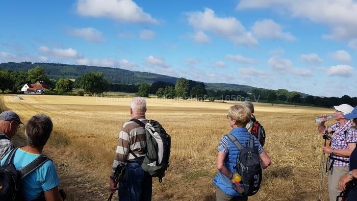 Osn.Ringweg 2018-07-08  (10)