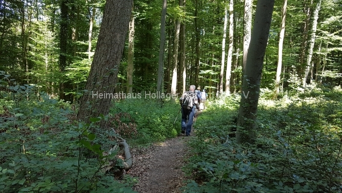 Osn.Ringweg 2018-07-08  (101)