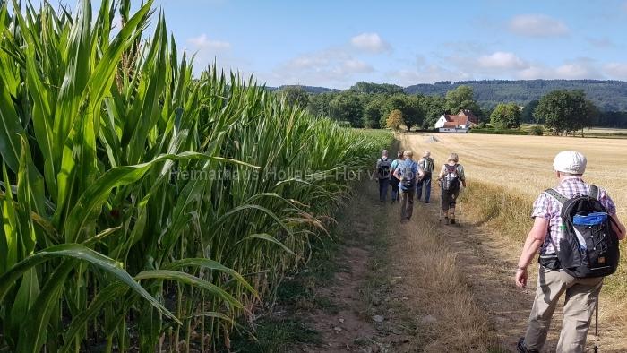 Osn.Ringweg 2018-07-08  (11)