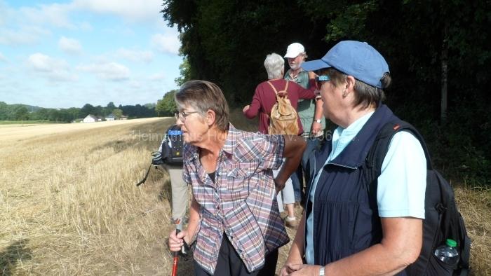 Osn.Ringweg 2018-07-08  (12)