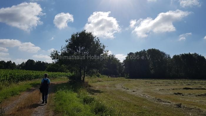 Osn.Ringweg 2018-07-08  (18)