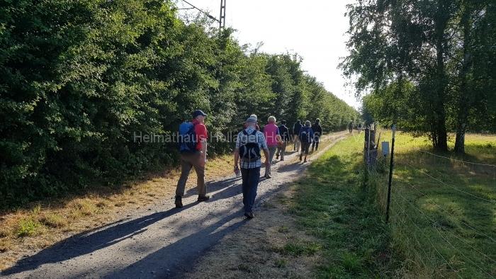 Osn.Ringweg 2018-07-08  (4)