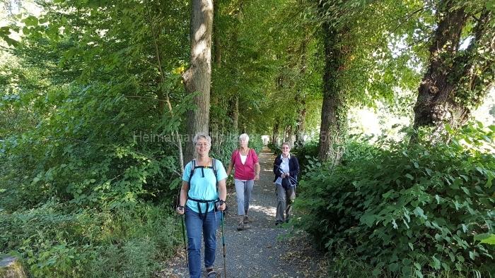 Osn.Ringweg 2018-07-08  (67)
