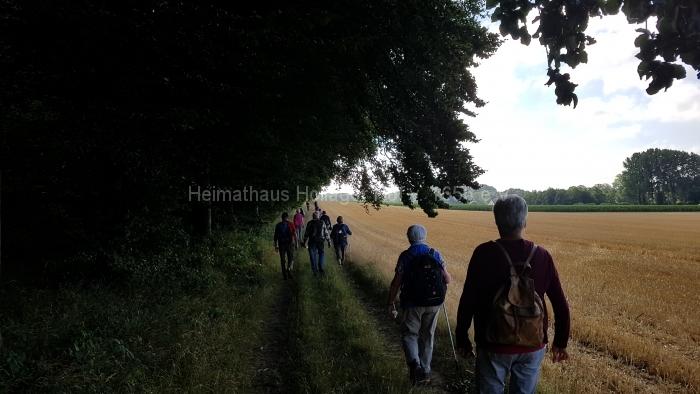 Osn.Ringweg 2018-07-08  (8)