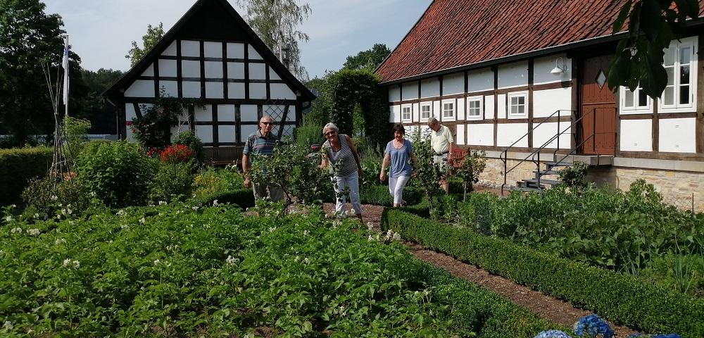 Hitze-Schlacht am GartenTraum-Sonntag