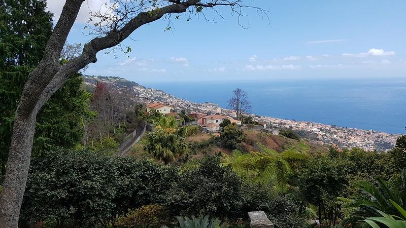 Wie wär's mit einem Ausflug auf die Blumeninsel Madeira?